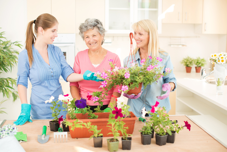 indoor-gardening-with-elderly